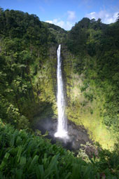 Akaka Falls on Big Island of Hawaii